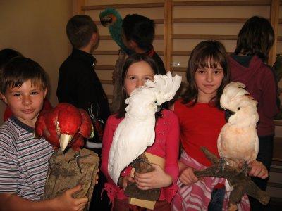Ptaki 2