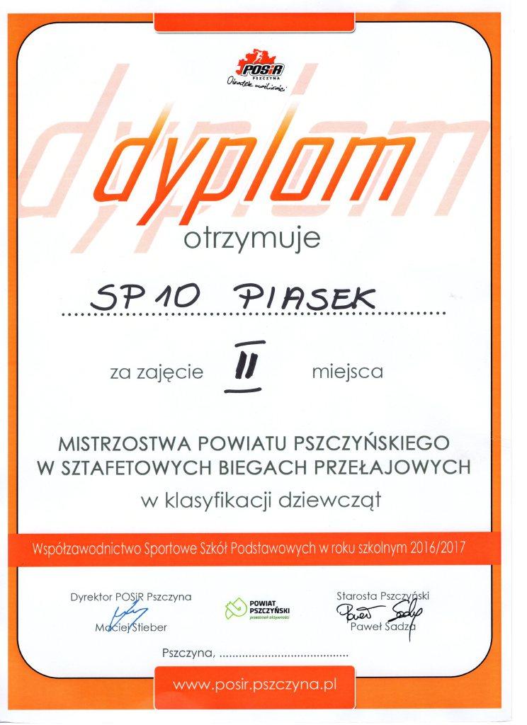 Dyplom027