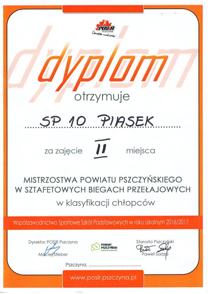 Dyplom028