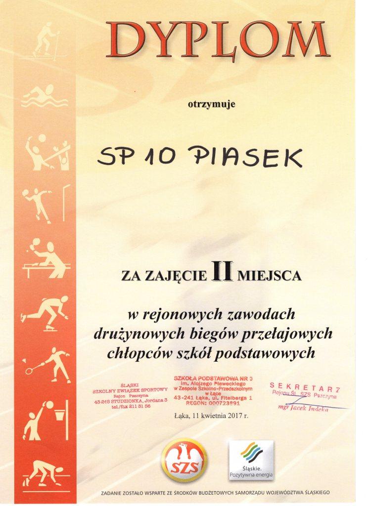 Dyplom113