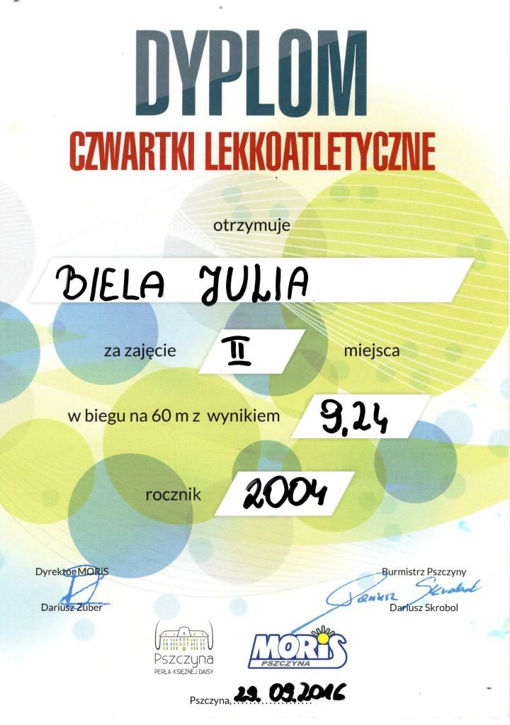 dyplom056